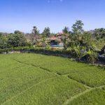 Villa East Indies Canggu (10)