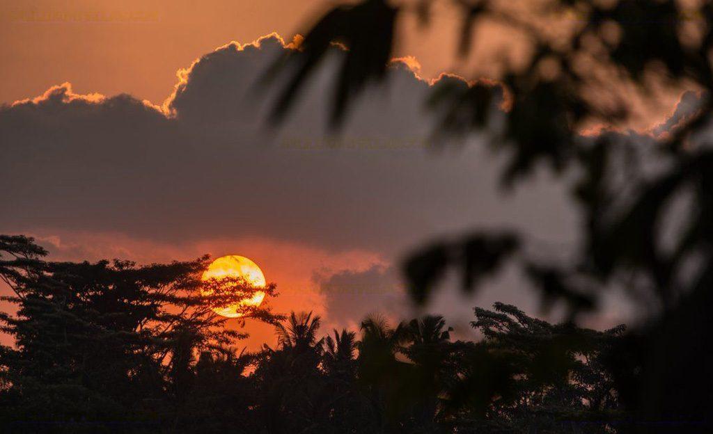 hartland estate_gallery_19_sunset