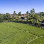 Villa East Indies Canggu (10)