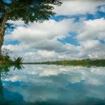 hartland estate_gallery_12_infinity_pool